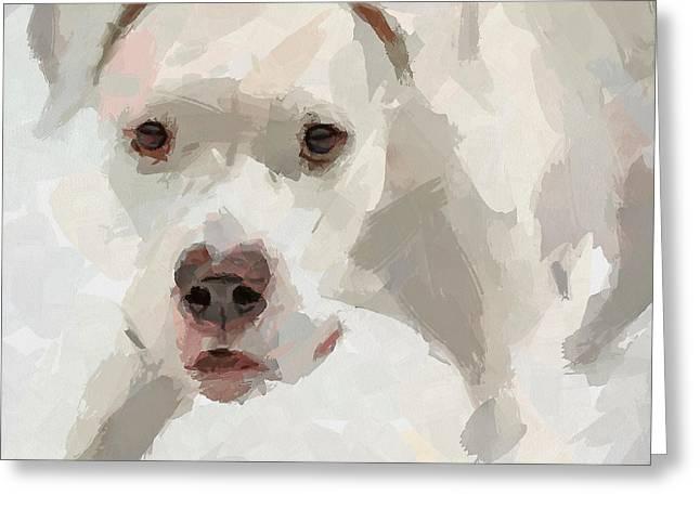 Dog Question Greeting Card