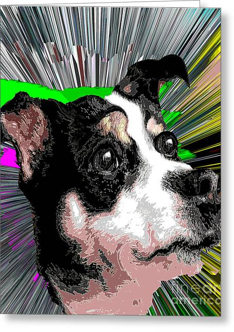 Dog Rat Terrier Knockout Greeting Card