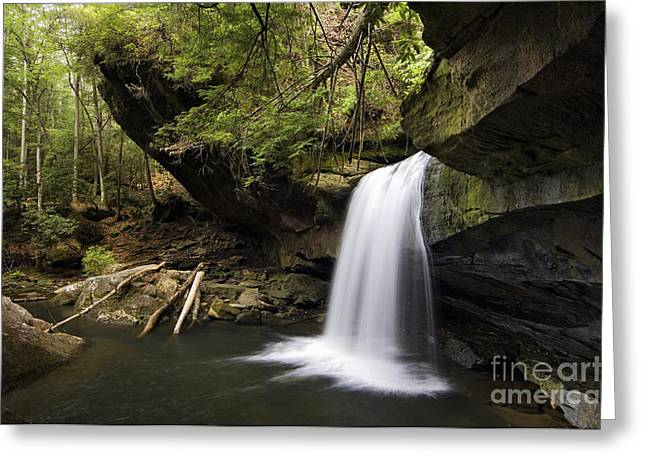 Dog Slaughter Falls - D002756 Greeting Card by Daniel Dempster