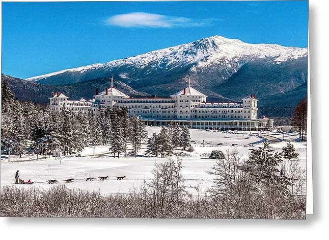 Dog Sled At The Mount Washington Hotel Greeting Card