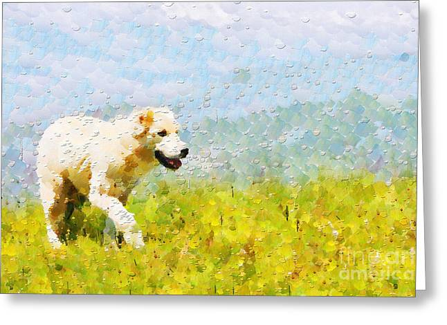 Dog Walking By Grass Painting Greeting Card by Magomed Magomedagaev