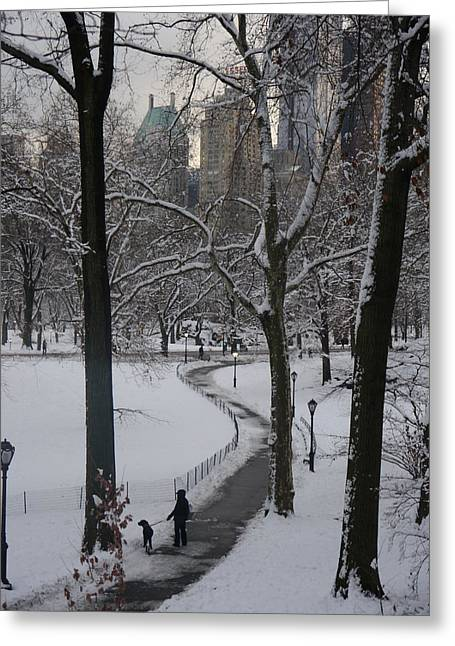 Greeting Card featuring the photograph Dog Walking In A Snowy Central Park by Winifred Butler