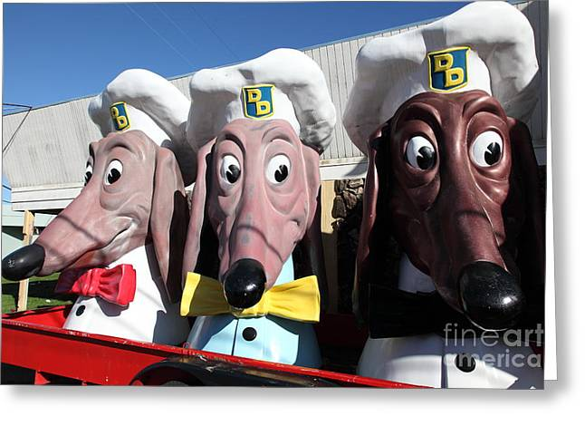 Doggie Diner Dogs - 5d20937 Greeting Card by Wingsdomain Art and Photography