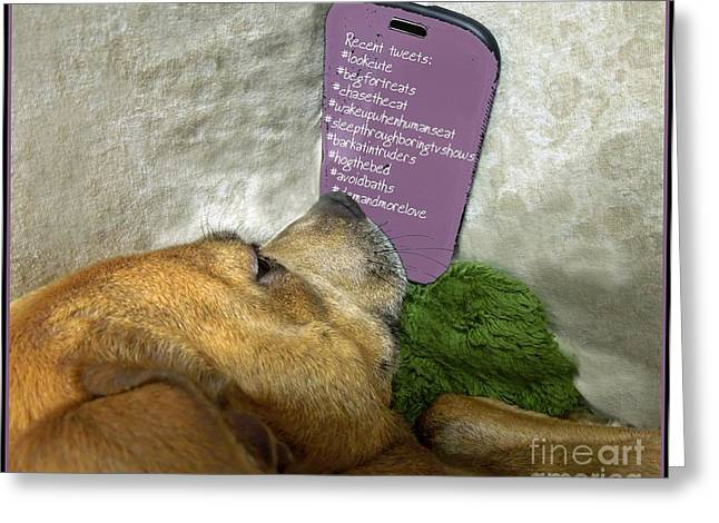 Doggy Hashtags Greeting Card by Renee Trenholm