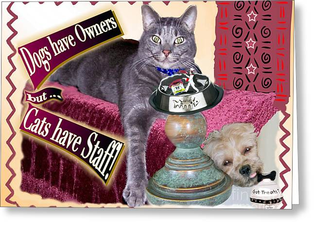 Dogs Have Owners - Cats Have Staff Greeting Card