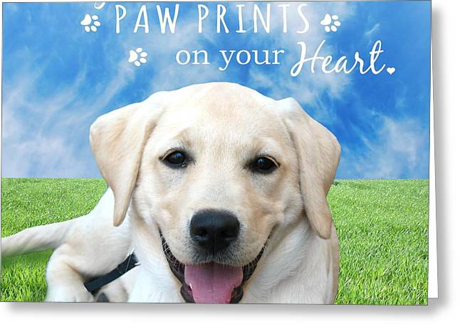 Dogs Leave Paw Prints On Your Heart Greeting Card by Li Or