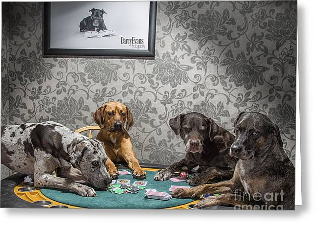 Dogs Playing Poker Greeting Card by Darcy Evans