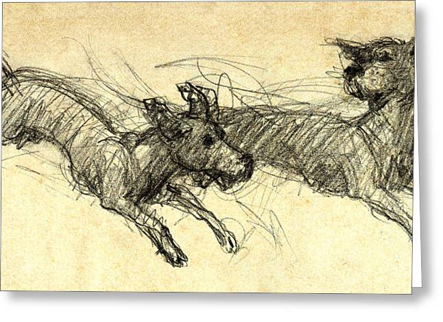 Dogsketch Greeting Card by Nato  Gomes