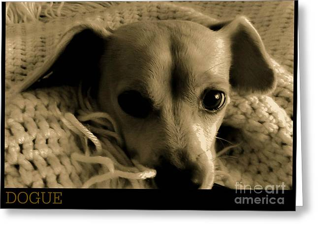 Dogue Greeting Card by Angela J Wright