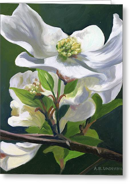 Dogwood Blossom Greeting Card by Alecia Underhill
