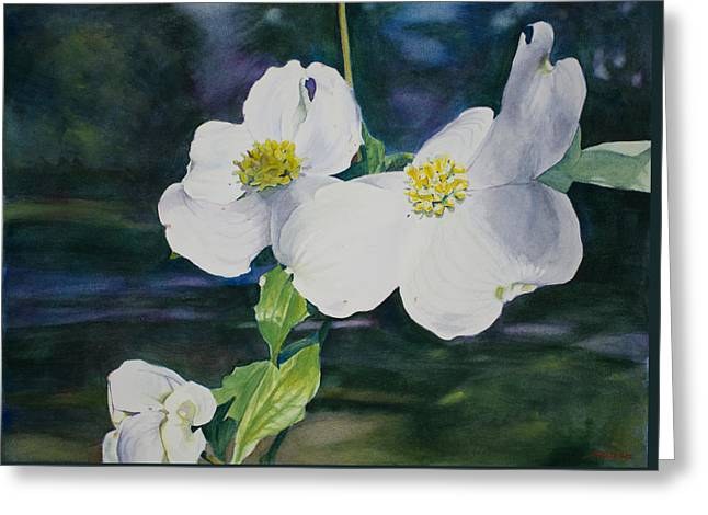 Dogwood Blossoms Greeting Card by Christopher Reid