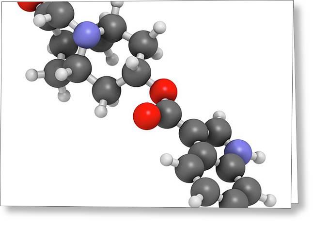 Dolasetron Nausea Drug Molecule Greeting Card by Molekuul
