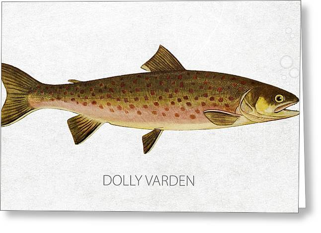 Dolly Varden Greeting Card