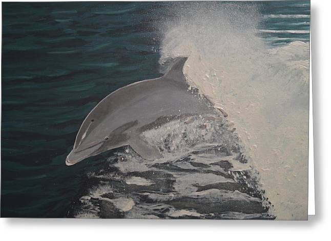 Dolphin In The Wake Greeting Card