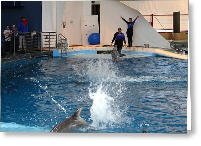 Dolphin Show - National Aquarium In Baltimore Md - 1212105 Greeting Card by DC Photographer