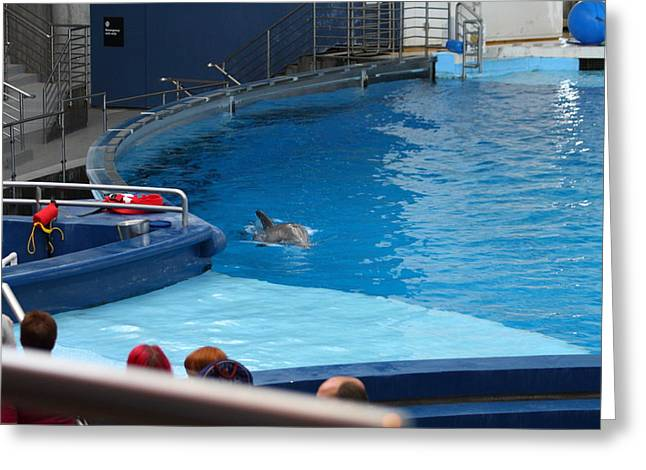 Dolphin Show - National Aquarium In Baltimore Md - 1212116 Greeting Card by DC Photographer