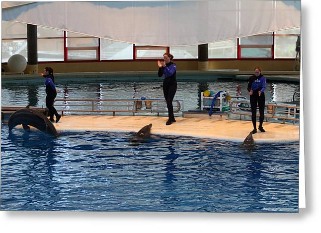 Dolphin Show - National Aquarium In Baltimore Md - 1212129 Greeting Card
