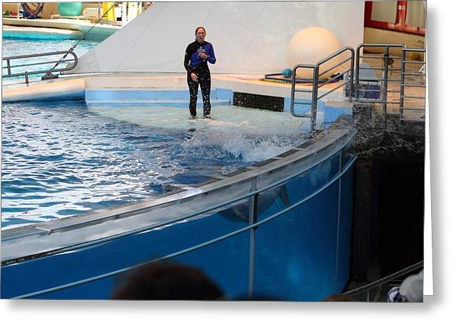 Dolphin Show - National Aquarium In Baltimore Md - 1212134 Greeting Card