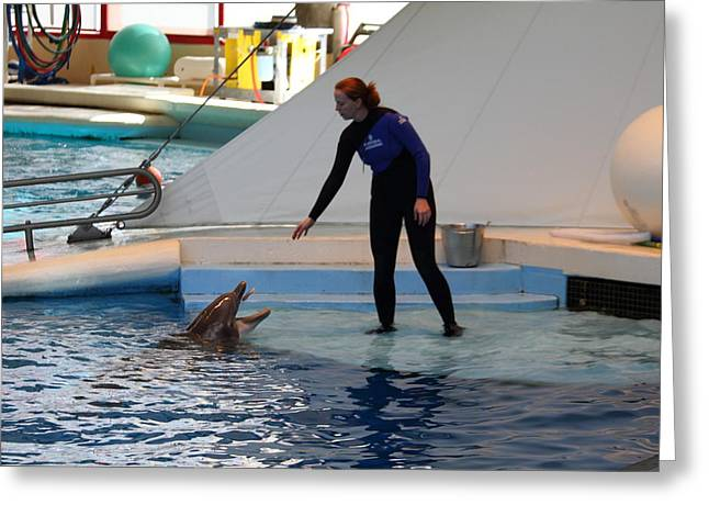 Dolphin Show - National Aquarium In Baltimore Md - 1212197 Greeting Card