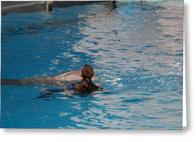 Dolphin Show - National Aquarium In Baltimore Md - 1212223 Greeting Card
