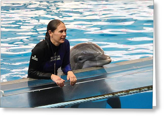 Dolphin Show - National Aquarium In Baltimore Md - 1212230 Greeting Card