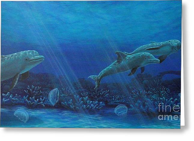 Dolphins And Moon Jellyfish Greeting Card by J Barth