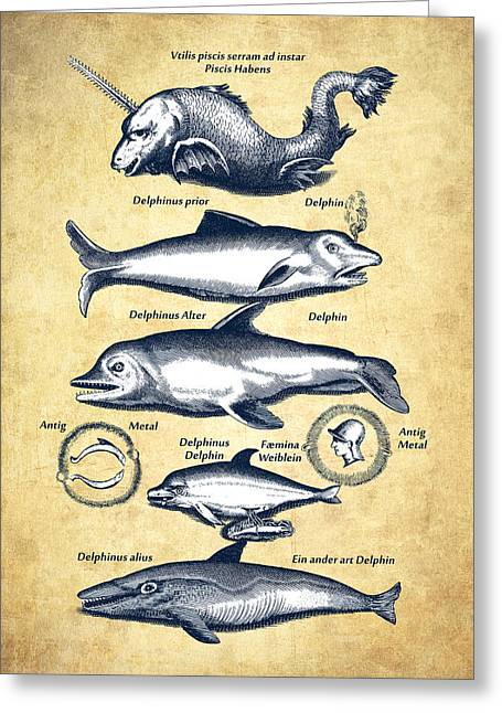 Dolphins - Historiae Naturalis - 1657 - Vintage Greeting Card