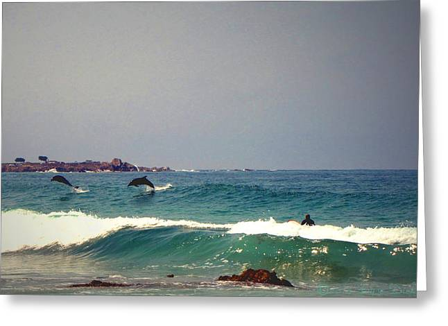 Dolphins Swimming With The Surfers At Asilomar State Beach  Greeting Card by Joyce Dickens