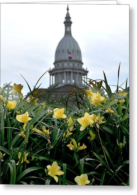 Dome Through The Daffodils Greeting Card