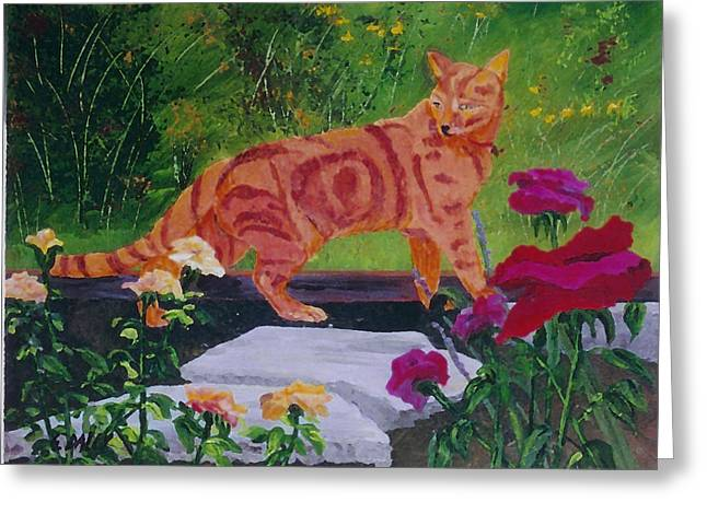 Domestic Tiger Greeting Card