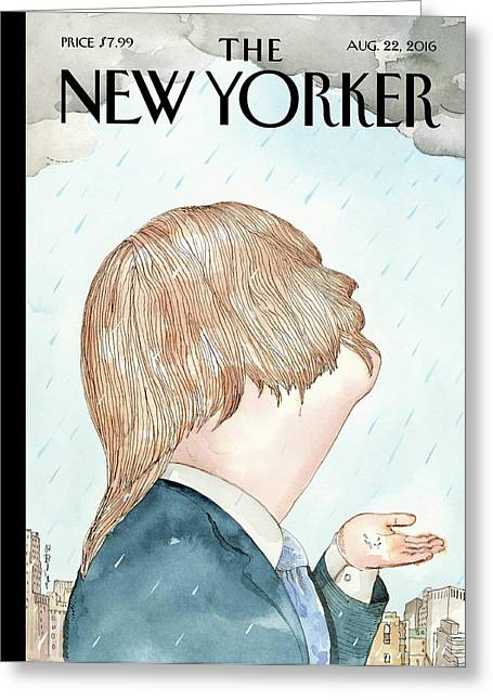 Donald's Rainy Days Greeting Card by Barry Blit