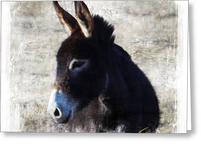 Donkey Delight Greeting Card by Ernestine Manowarda