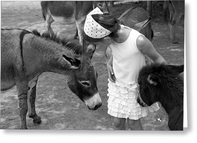 Donkey Whisperer Greeting Card by Brooke T Ryan