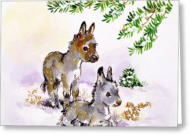 Donkeys Greeting Card by Diane Matthes