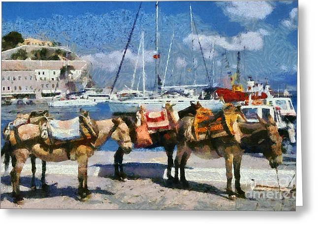 Donkeys Waiting For A Ride Greeting Card