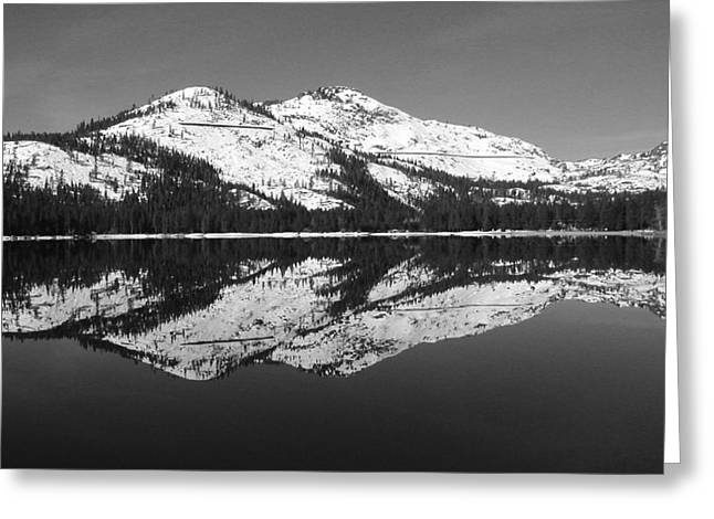 Donner Black And White Greeting Card by Mickey Hatt
