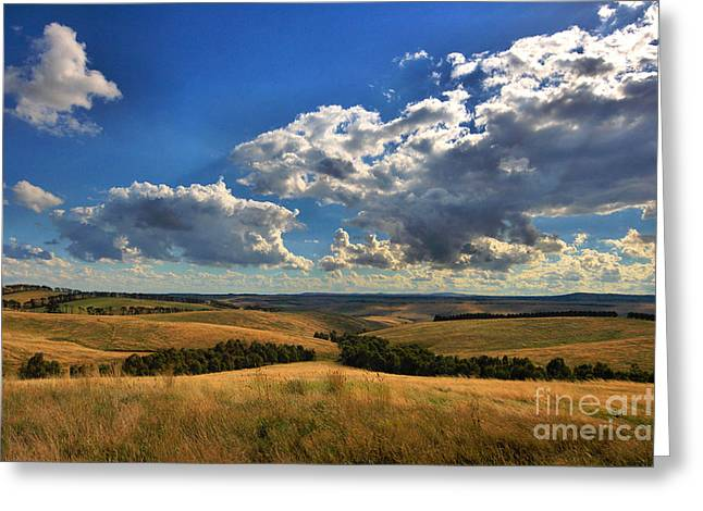Donny Brook Hills Greeting Card by Joy Watson