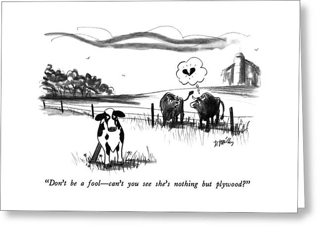 Don't Be A Fool - Can't You See She's Nothing But Greeting Card