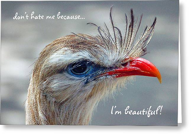 Greeting Card featuring the photograph Don't Be A Hater by Donna Proctor