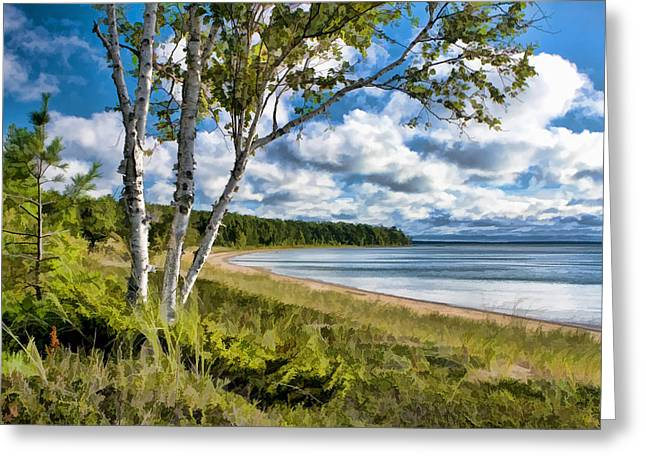 Door County Europe Bay Birch Greeting Card by Christopher Arndt