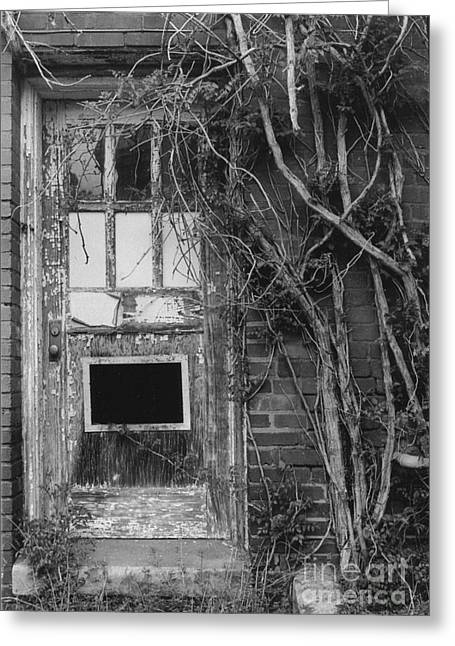 Door With Vines Greeting Card by Michelle OConnor