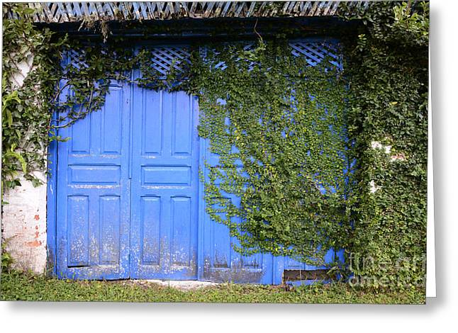 Doors And Windows Minas Gerais State Brazil 5 Greeting Card by Bob Christopher
