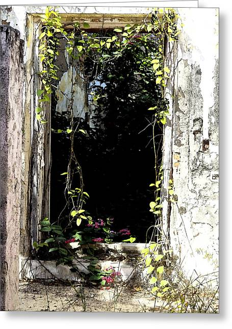 Doorway Delights Greeting Card by Anne Mott
