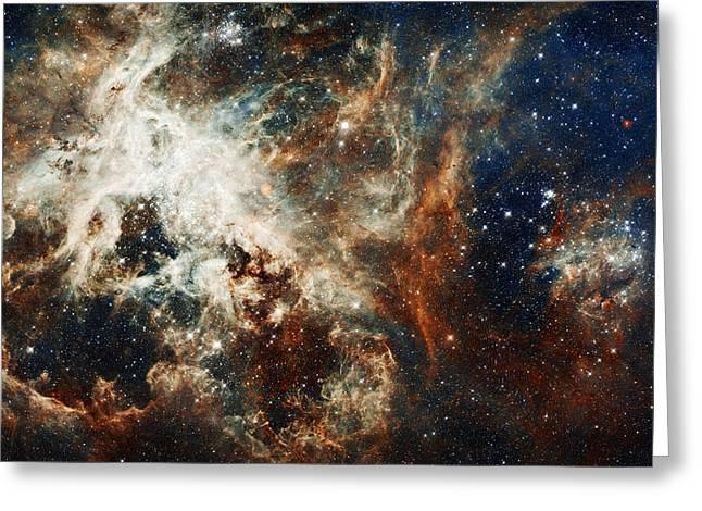 Doradus Nebula Greeting Card by Celestial Images