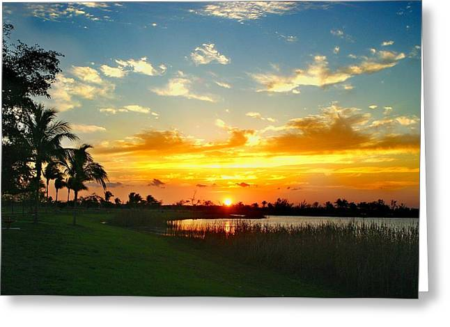 Doral Sunshine Greeting Card by Gilberto Gutierrez