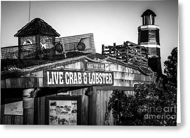 Dory Fishing Fleet Live Crab And Lobster Sign Picture Greeting Card
