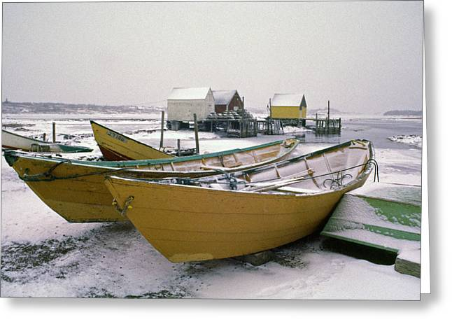 Dorys In Winter At Blue Rocks Nova Scotia Greeting Card