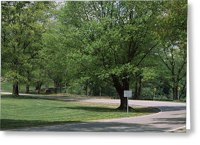 Double Bend Sign In A Park, Letchworth Greeting Card by Panoramic Images