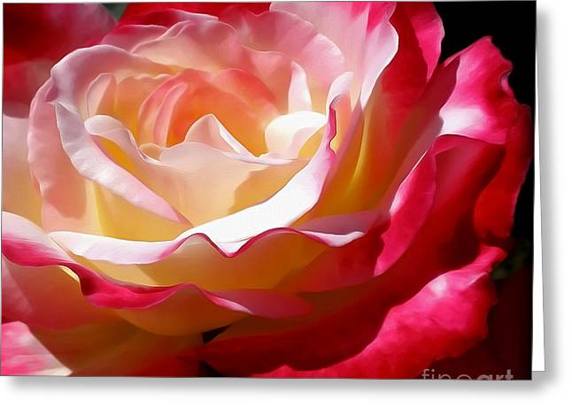 Double Delight Rose Greeting Card by Kaye Menner