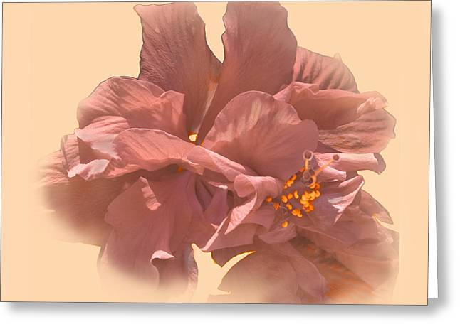 Double Hibiscus Portrait Greeting Card